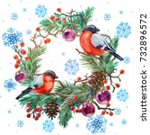 christmas wreath with birds.... | Shutterstock . vector #732896572