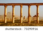 Columns In Ancient Palmyra In...