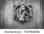 old door close up   black  ... | Shutterstock . vector #732986008
