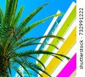 colorful minimal tropic life.... | Shutterstock . vector #732991222