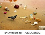 pigeon and plastic pollution in ...   Shutterstock . vector #733008502