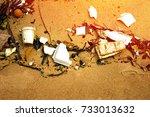 plastic pollution in ocean ... | Shutterstock . vector #733013632