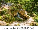 park gostilje on the mountain... | Shutterstock . vector #733019362