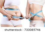 woman's body before and after... | Shutterstock . vector #733085746