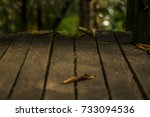 top of wood table side with...   Shutterstock . vector #733094536
