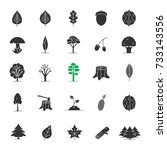 tree types glyph icons set.... | Shutterstock . vector #733143556