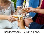 hands holding glasses and... | Shutterstock . vector #733151266