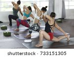 women asian exercising in... | Shutterstock . vector #733151305