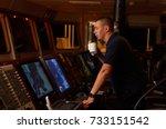 navigation officer   pilot on... | Shutterstock . vector #733151542
