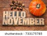 hello november greeting card  ... | Shutterstock . vector #733175785