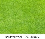Grass As Texture Or Background