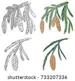 illustration on white... | Shutterstock .eps vector #733207336
