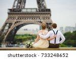 just married couple in wedding... | Shutterstock . vector #733248652