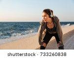 portrait of charming caucasian... | Shutterstock . vector #733260838