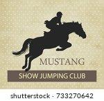 vector illustration  rider... | Shutterstock .eps vector #733270642