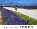 a rider enjoyed biking with the ...   Shutterstock . vector #733323892