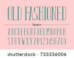 old fashioned trendy retro type ... | Shutterstock .eps vector #733336006
