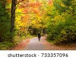 Woman Walking Through Forest I...