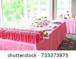 rows of pink party favor bags... | Shutterstock . vector #733373875