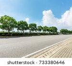 asphalt road and green tree in... | Shutterstock . vector #733380646