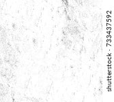 grunge texture black and white. ... | Shutterstock . vector #733437592