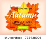 autumn sale background layout... | Shutterstock .eps vector #733438006