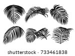 areca palm sketch by hand... | Shutterstock .eps vector #733461838