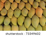Asian mangoes riped - stock photo