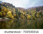 lac des perches is a lake in... | Shutterstock . vector #733530316