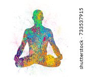 yoga pose on spray texture.... | Shutterstock .eps vector #733537915