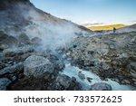 seltun geothermal area ... | Shutterstock . vector #733572625