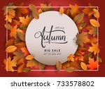 autumn sale background  hand... | Shutterstock .eps vector #733578802