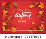 autumn sale background  hand... | Shutterstock .eps vector #733578976