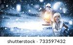 ice queen and winter landscape  | Shutterstock . vector #733597432