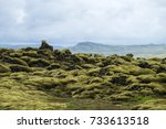 icelandic moss covers volcanic... | Shutterstock . vector #733613518
