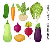 garden vegetable set  cucumber  ... | Shutterstock .eps vector #733740868