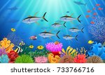 colorful coral reef with tuna... | Shutterstock .eps vector #733766716