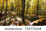 golden forest | Shutterstock . vector #733770268