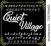 handcrafted vector alphabet... | Shutterstock .eps vector #733790602