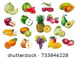 fruits seamless pattern. a set... | Shutterstock . vector #733846228
