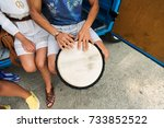 summer holidays  music  travel... | Shutterstock . vector #733852522