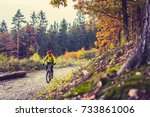 mountain biker riding on bike... | Shutterstock . vector #733861006