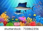 sailfish swimming under water... | Shutterstock . vector #733862356