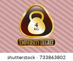 gold shiny badge with 4kg... | Shutterstock .eps vector #733863802