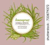lemongrass vector frame   Shutterstock .eps vector #733879372