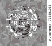 private written on a grey...   Shutterstock .eps vector #733881088
