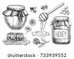 honey set. vintage hand drawn... | Shutterstock . vector #733939552