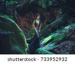a young mysterious girl   a... | Shutterstock . vector #733952932