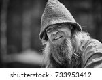 man in the hat. old man with a... | Shutterstock . vector #733953412