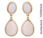 gold earrings with white stones ... | Shutterstock . vector #733984426